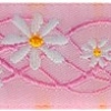 White Daisy on Pink 1 inch